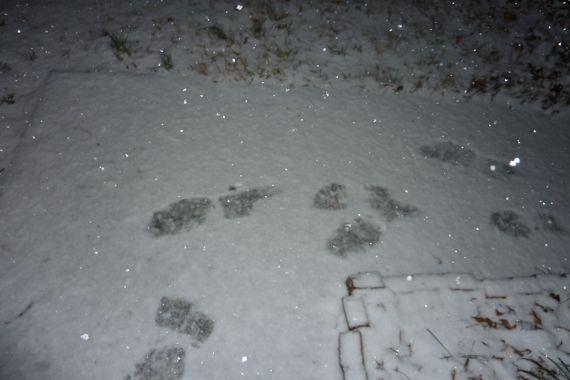 10_minutes_ago_snow.jpg