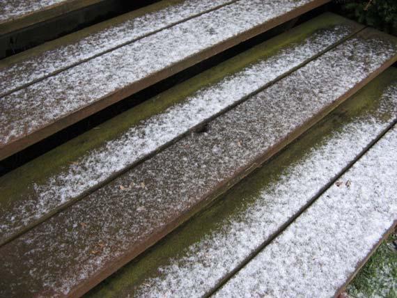 snow_steps.jpg