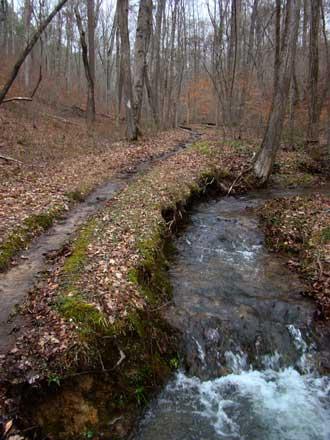 trail_creek.jpg