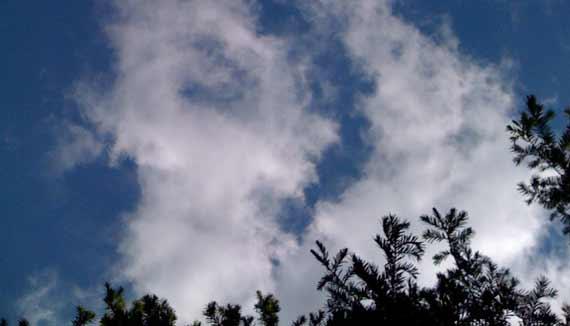sky_view.jpg