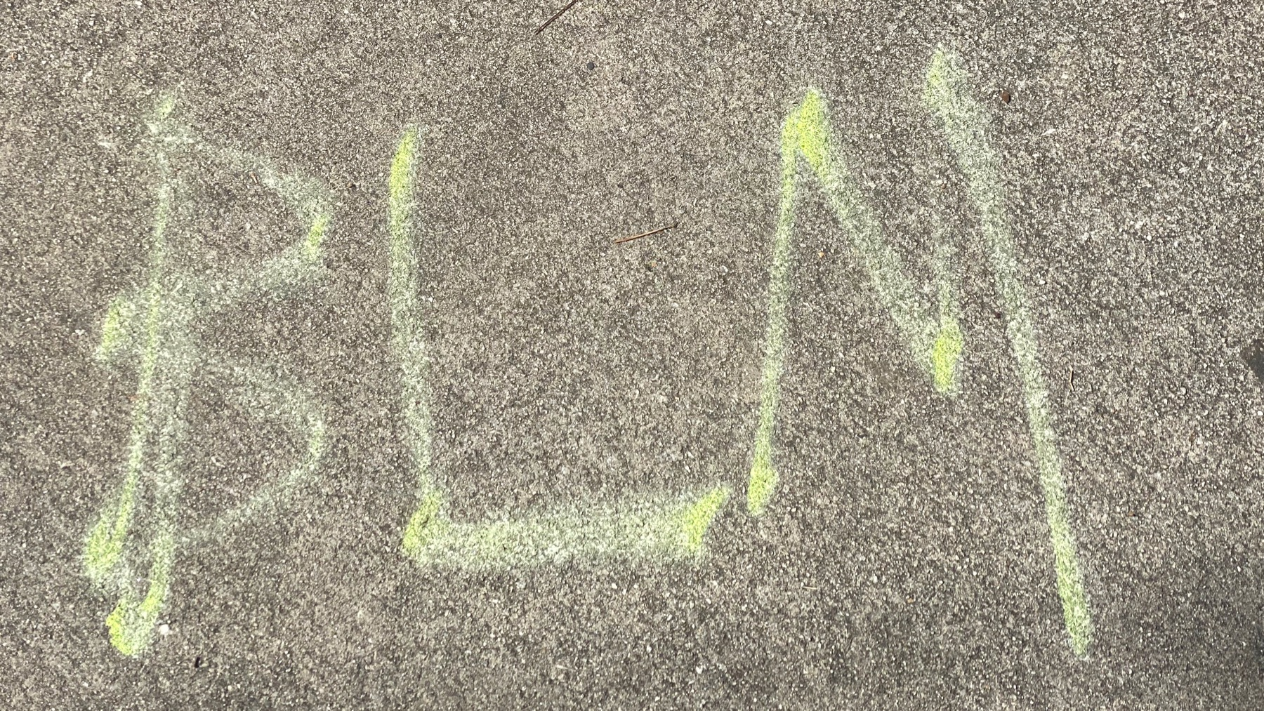 BLM in chalk