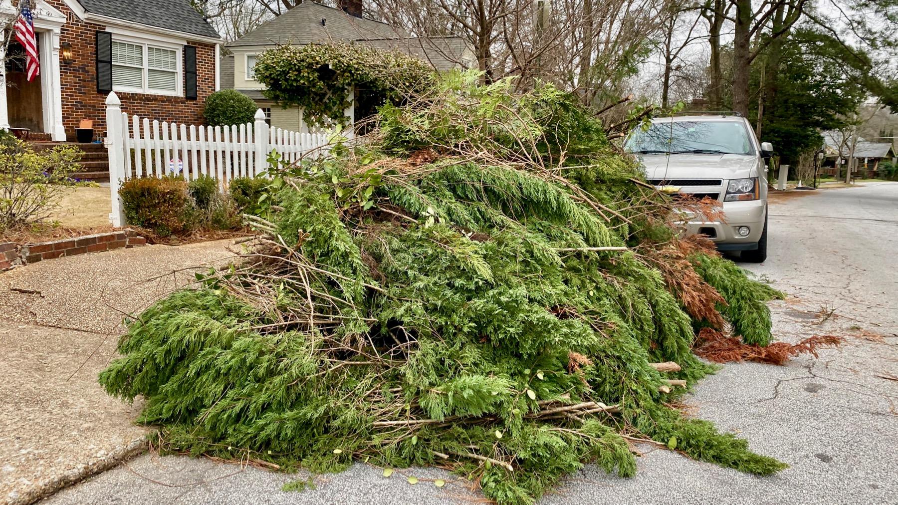 Landscape cleanup pile