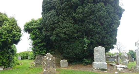 Bruce grave