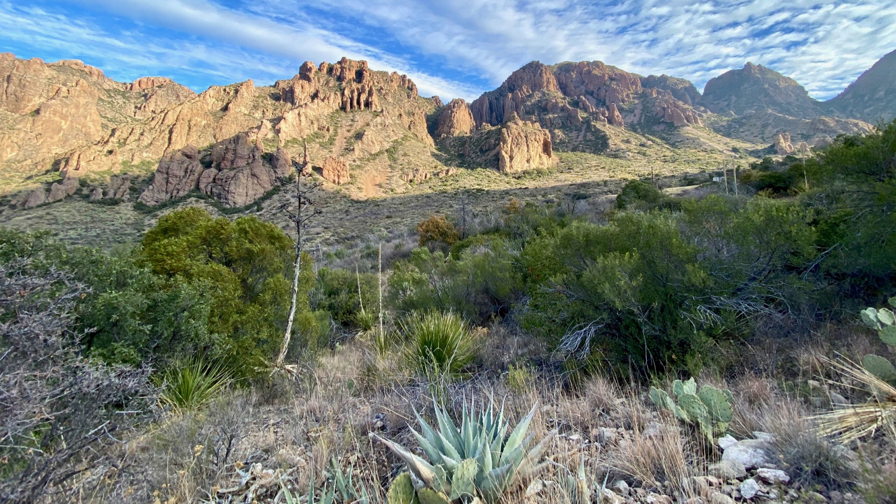 Chisos Basin rt N