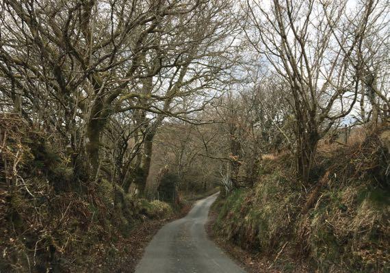 Dartmoor narrow one lane road