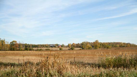 E Ontario farmland fall