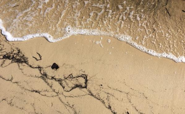 FL Gulf beach