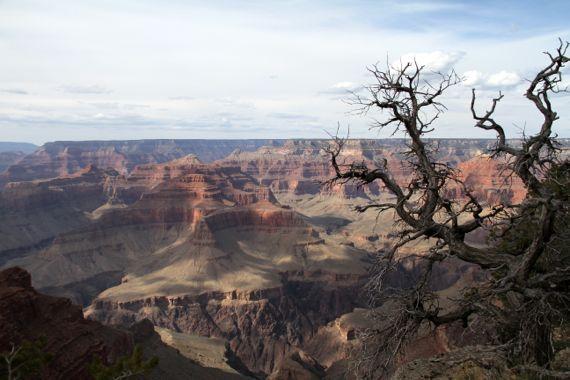 Grand Canyon S rim W