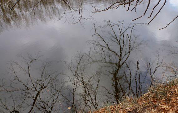 Grand River Jan reflections