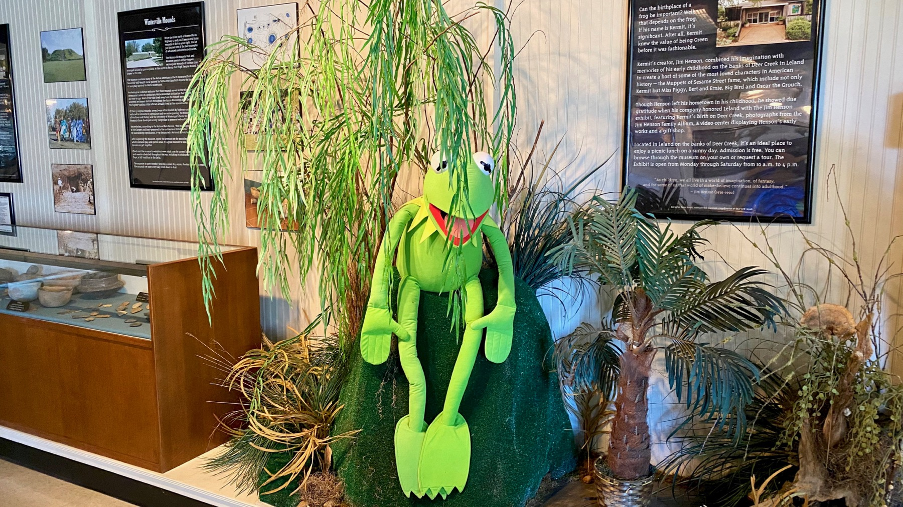 Kermit display