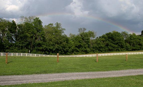Lee Co rainbow