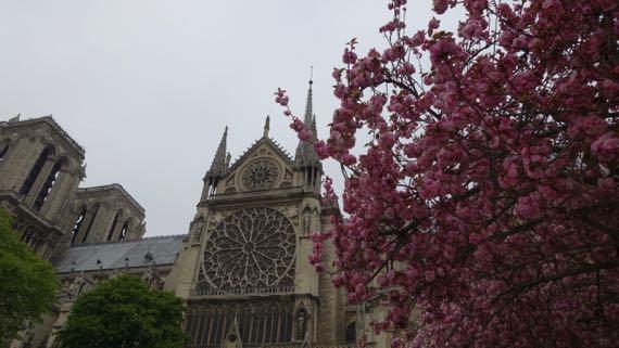 Notre Dame riverside