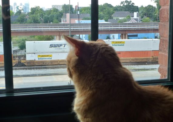 Pumps window train time