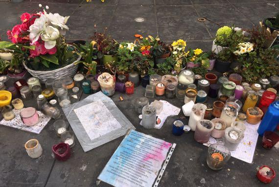 Republique candles plants