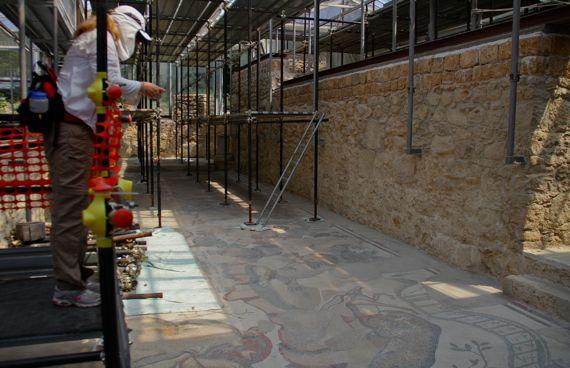 Villa Roma di Casale mosaic greenhouse complexity