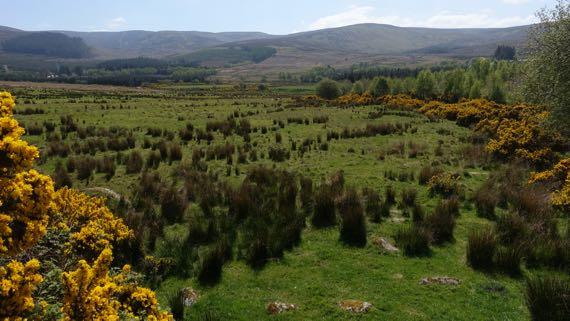 Wicklow gap area