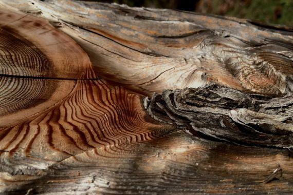Aged cut lumber