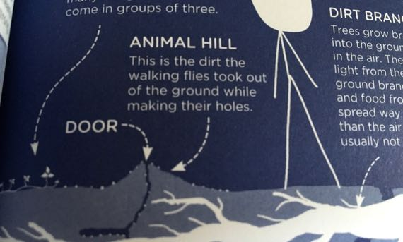 Animal hill