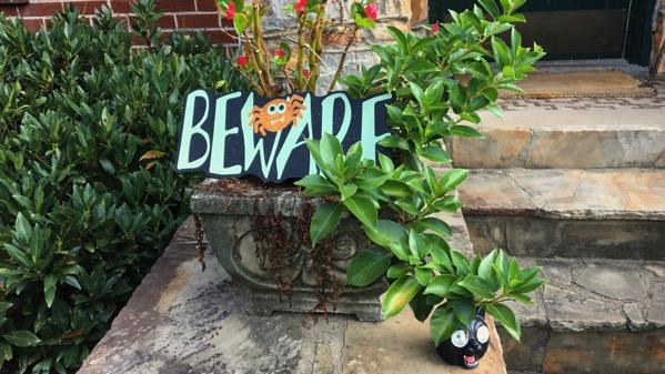 Beware begonias