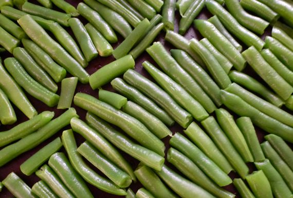 Blanched green beans ready for freezing