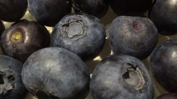 Blueberries big