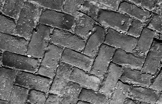 Brick sidewalk BW