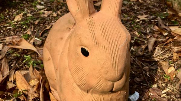Bunnie ceramic