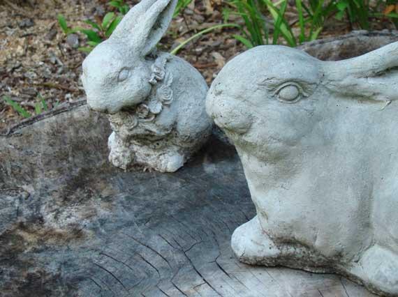 bunnies_cement.jpg