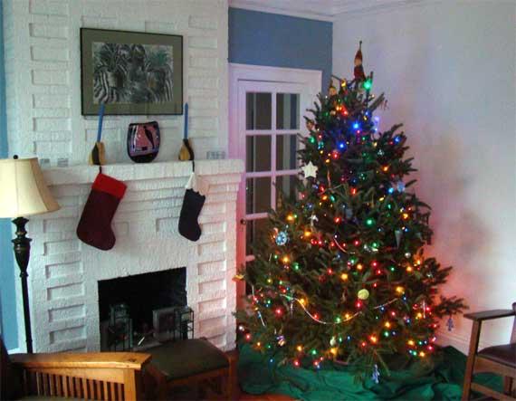C_tree_lights.jpg