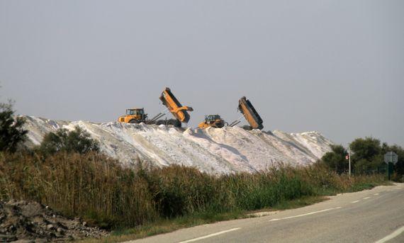 Camargue salt dumping duo