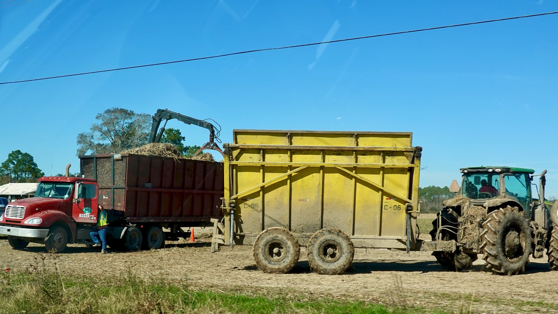 Cane harvesting