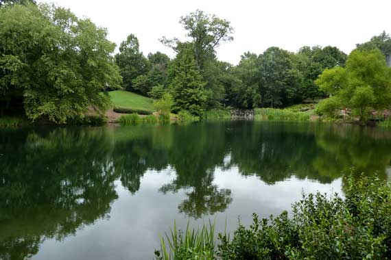 carter_center_pond_view.jpg
