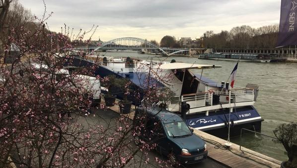 Cherries by Seine