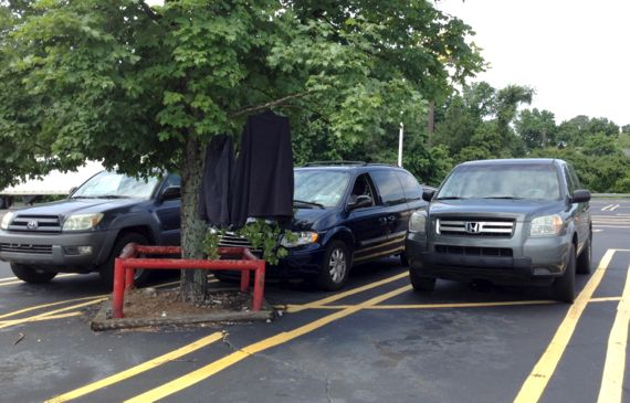 Coats tree parking lot
