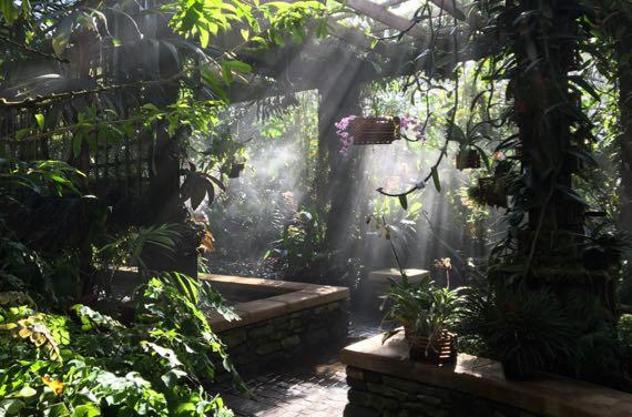 Conservatory mist