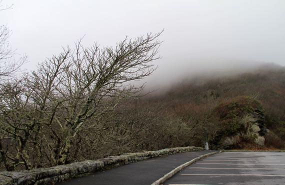 Craggy gardens cloud drift