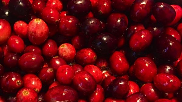Cranberry sauce coming