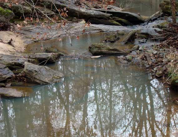 creek_reflections.jpg