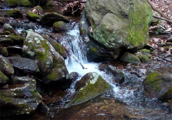 creek_rushing_in_rain.jpg