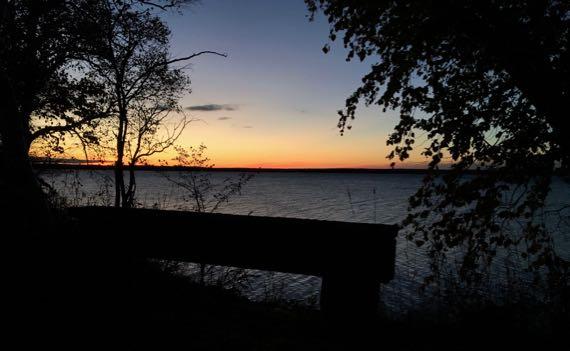 Dawn bench lake