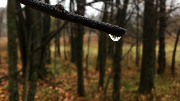 Droplet lens