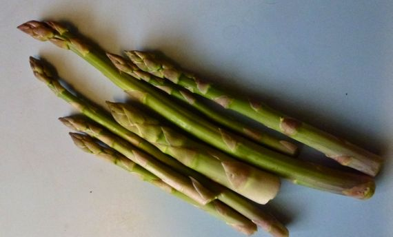 Early asparagus harvest spears