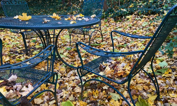 Falling fallen leaves