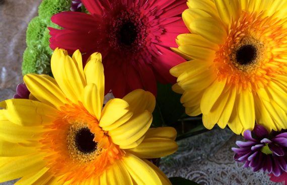 Fleurs pretty