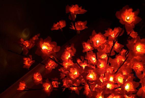 Flower lights red