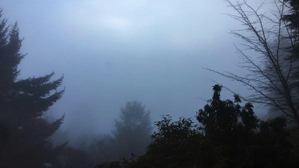 Fog here