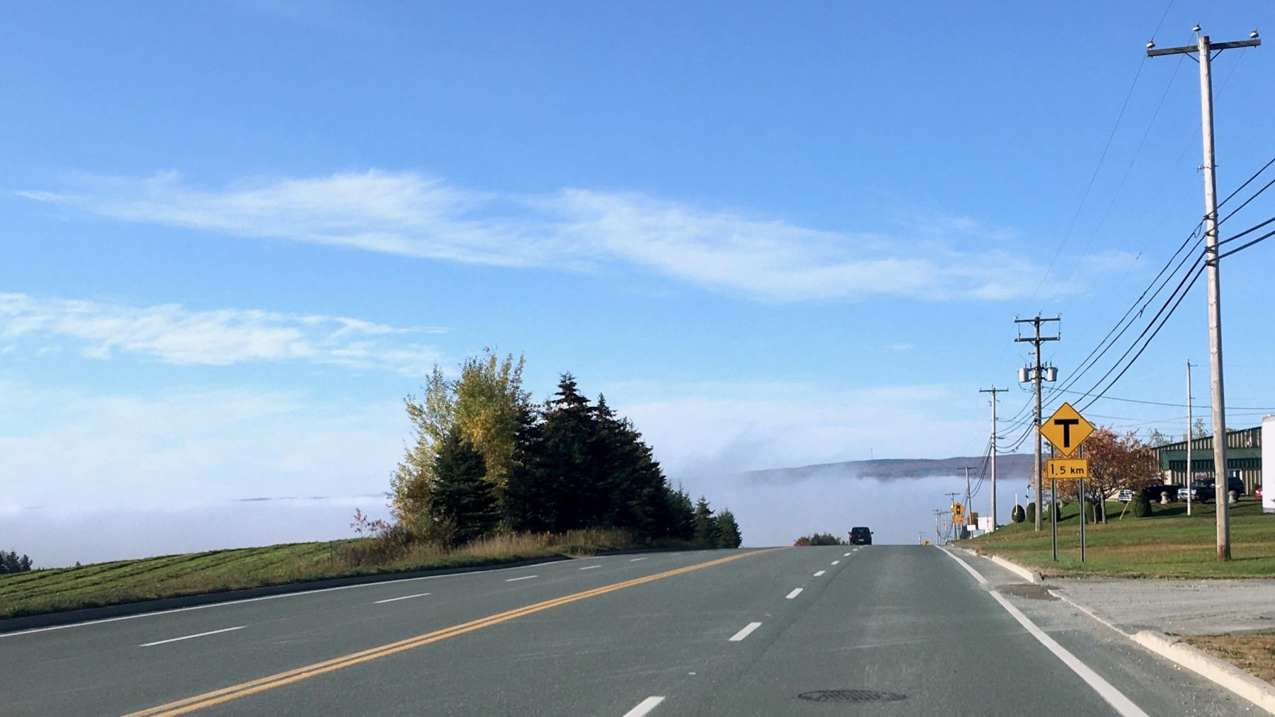 Fog in little valley