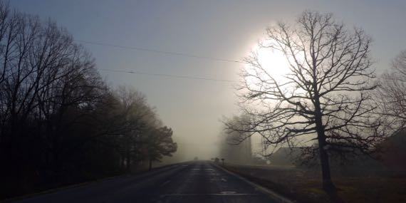 Fog in morning