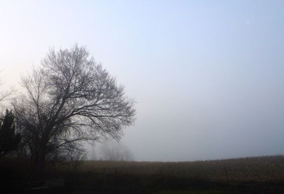 Foggy after storm morning