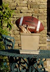 football_on_pedestal.jpg